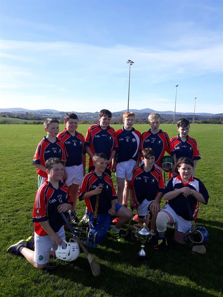 1st year hurling success